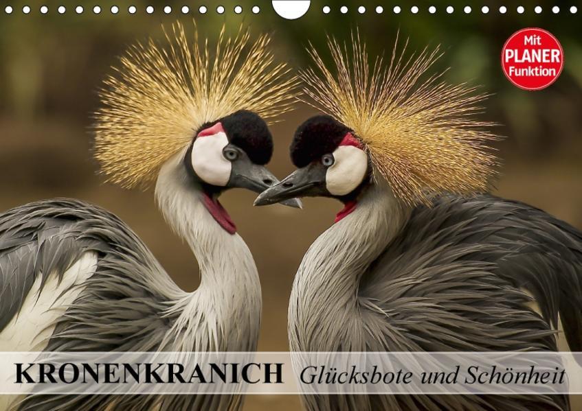 Kronenkranich. Glücksbote und Schönheit (Wandkalender 2017 DIN A4 quer) - Coverbild