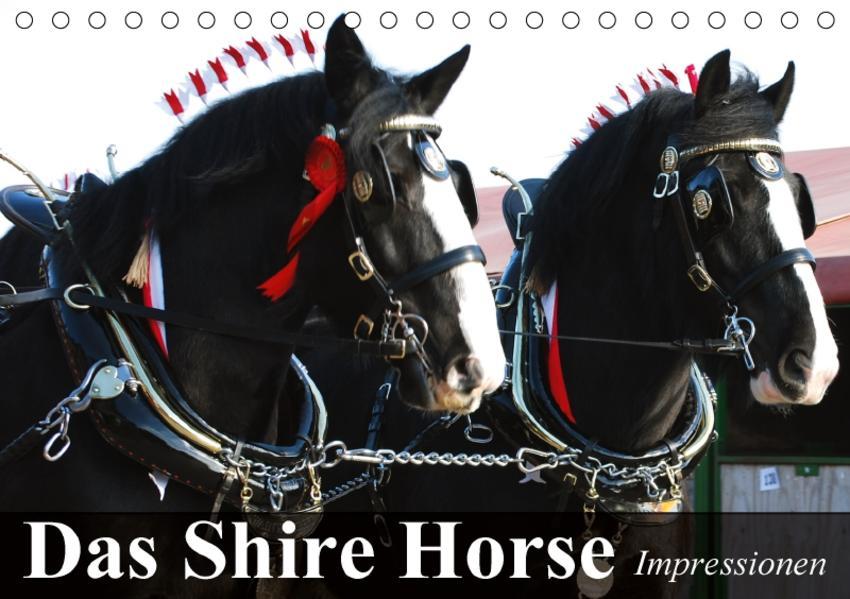 Das Shire Horse. Impressionen (Tischkalender 2017 DIN A5 quer) - Coverbild