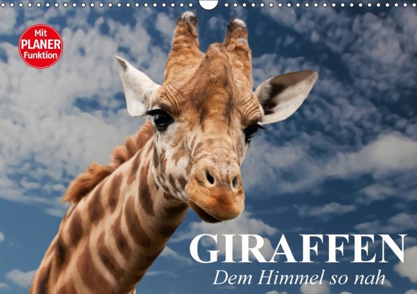 Giraffen. Dem Himmel so nah (Wandkalender 2017 DIN A3 quer) - Coverbild