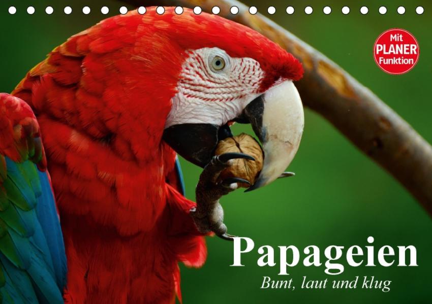 Papageien. Bunt, laut und klug (Tischkalender 2017 DIN A5 quer) - Coverbild