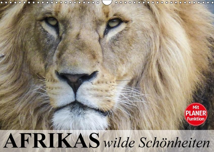 Afrikas wilde Schönheiten (Wandkalender 2017 DIN A3 quer) - Coverbild