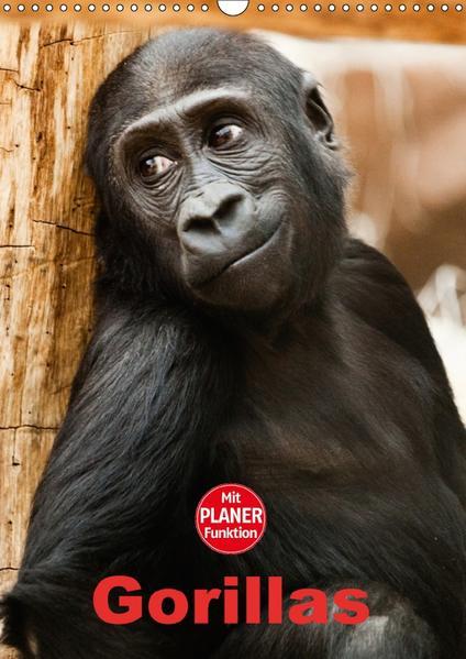 Gorillas (Wandkalender 2017 DIN A3 hoch) - Coverbild