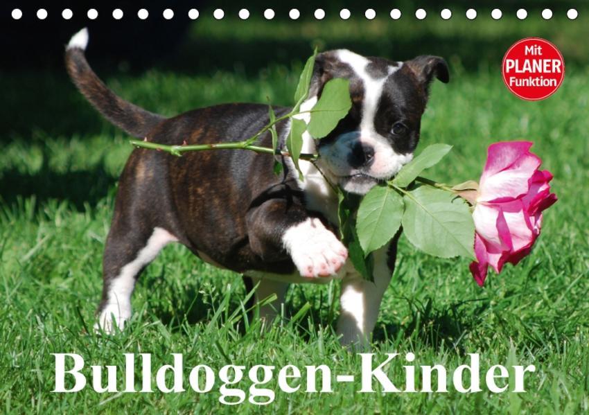 Bulldoggen-Kinder (Tischkalender 2017 DIN A5 quer) - Coverbild