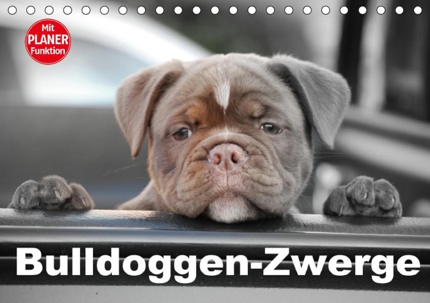Bulldoggen-Zwerge (Tischkalender 2017 DIN A5 quer) - Coverbild