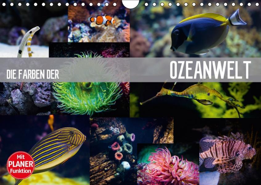 Die Farben der Ozeanwelt (Wandkalender 2017 DIN A4 quer) - Coverbild