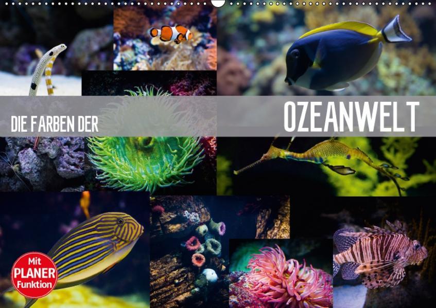 Die Farben der Ozeanwelt (Wandkalender 2017 DIN A2 quer) - Coverbild