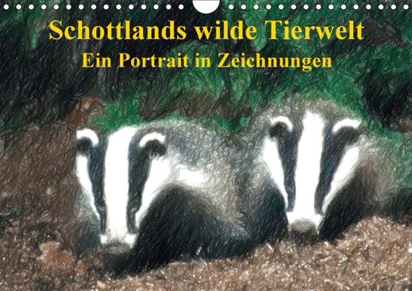 Schottlands wilde Tierwelt - Ein Porträt in Zeichnungen (Wandkalender 2017 DIN A4 quer) - Coverbild