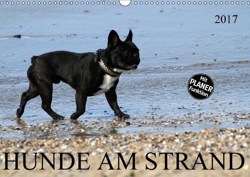 HUNDE AM STRAND (Wandkalender 2017 DIN A3 quer) - Coverbild