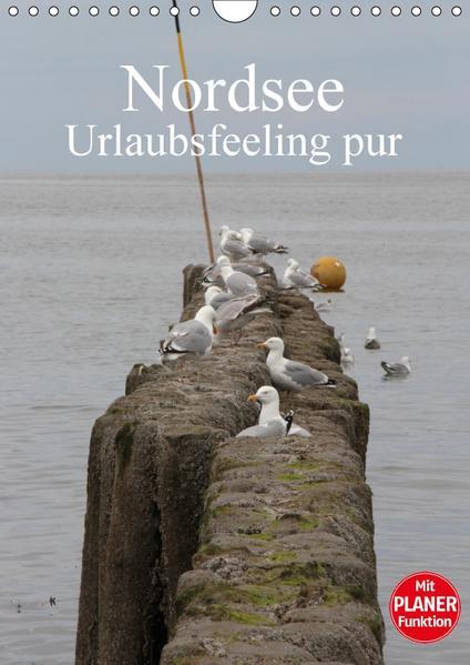 Nordsee / Urlaubsfeeling pur / Familienplaner (Wandkalender 2017 DIN A4 hoch) - Coverbild