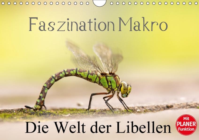 Faszination Makro - Die Welt der Libellen (Wandkalender 2017 DIN A4 quer) - Coverbild