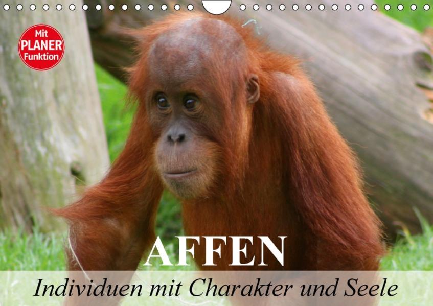 Affen - Individuen mit Charakter und Seele (Wandkalender 2017 DIN A4 quer) - Coverbild