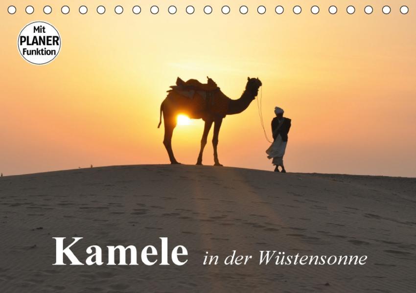 Kamele in der Wüstensonne (Tischkalender 2017 DIN A5 quer) - Coverbild