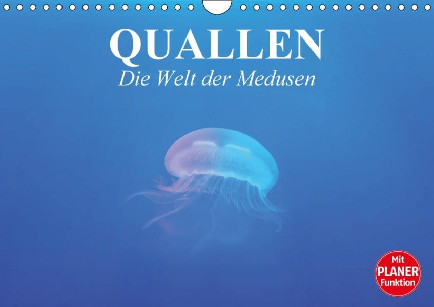 Quallen. Die Welt der Medusen (Wandkalender 2017 DIN A4 quer) - Coverbild