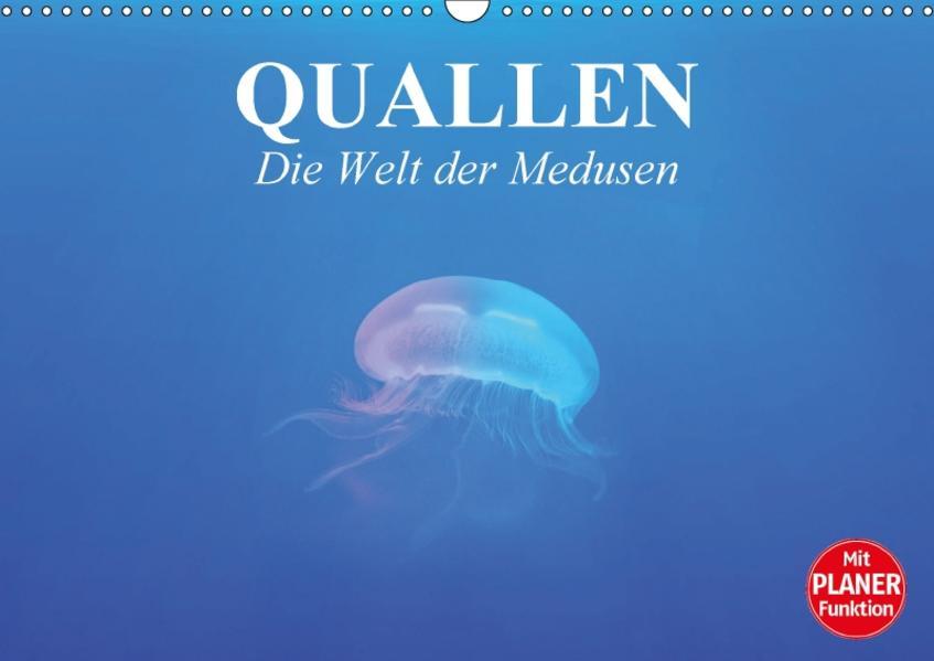 Quallen. Die Welt der Medusen (Wandkalender 2017 DIN A3 quer) - Coverbild