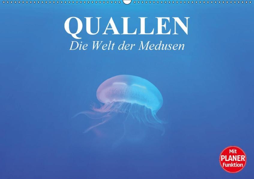 Quallen. Die Welt der Medusen (Wandkalender 2017 DIN A2 quer) - Coverbild