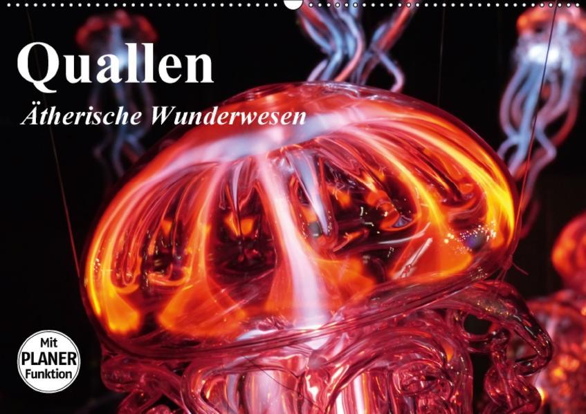 Quallen. Ätherische Wunderwesen (Wandkalender 2017 DIN A2 quer) - Coverbild