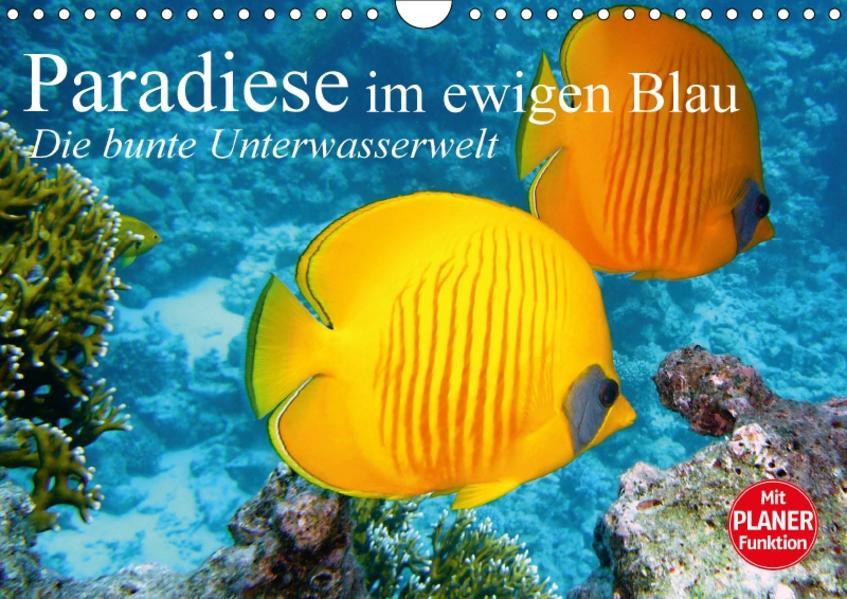 Paradiese im ewigen Blau. Die bunte Unterwasserwelt (Wandkalender 2017 DIN A4 quer) - Coverbild