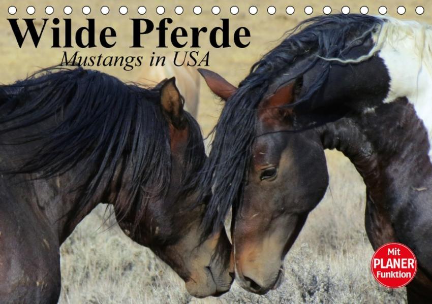 Wilde Pferde. Mustangs in USA (Tischkalender 2017 DIN A5 quer) - Coverbild