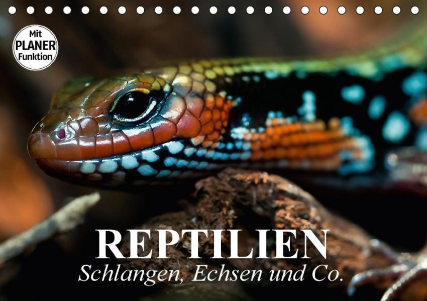 Reptilien. Schlangen, Echsen und Co. (Tischkalender 2017 DIN A5 quer) - Coverbild
