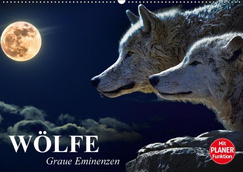 Wölfe. Graue Eminenzen (Wandkalender 2017 DIN A2 quer) - Coverbild