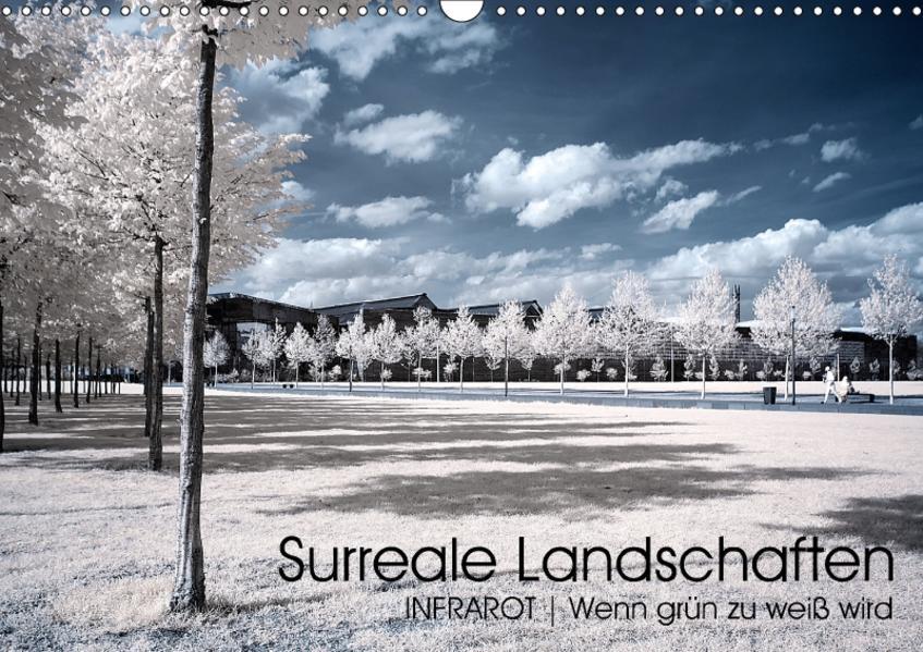 Surreale Landschaften. INFRARROT - Wenn grün zu weiß wird (Wandkalender 2017 DIN A3 quer) - Coverbild