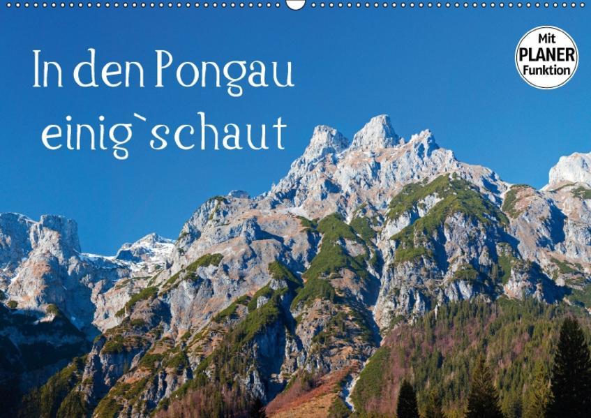 In den Pongau einig`schautAT-Version  (Wandkalender 2017 DIN A2 quer) - Coverbild