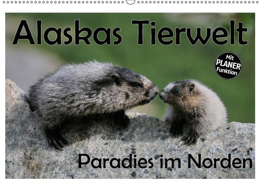Alaskas Tierwelt - Paradies im Norden (Wandkalender 2017 DIN A2 quer) - Coverbild