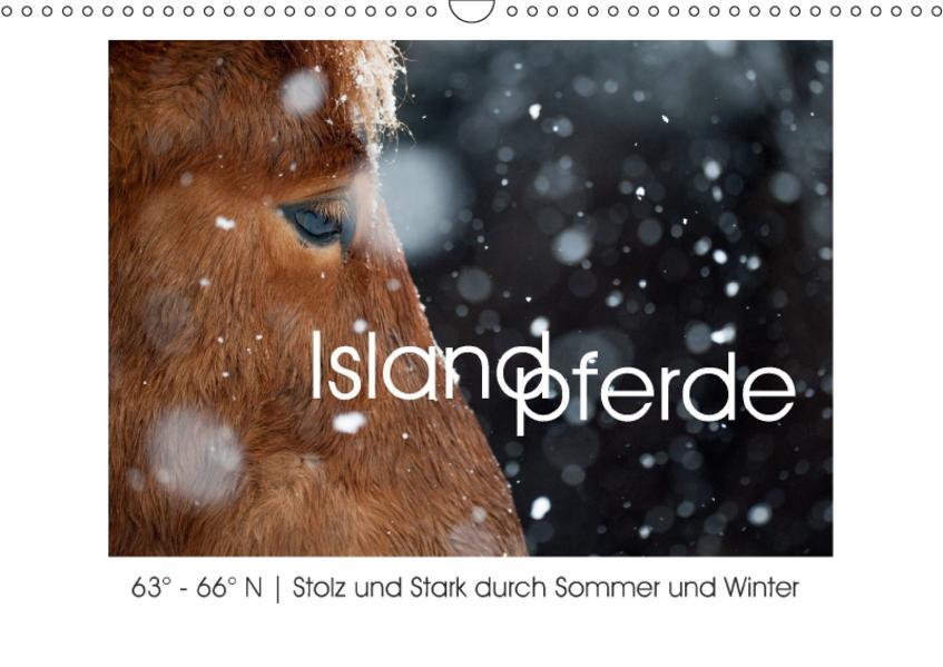 Islandpferde - Stolz und Stark durch Sommer und Winter (Wandkalender 2017 DIN A3 quer) - Coverbild