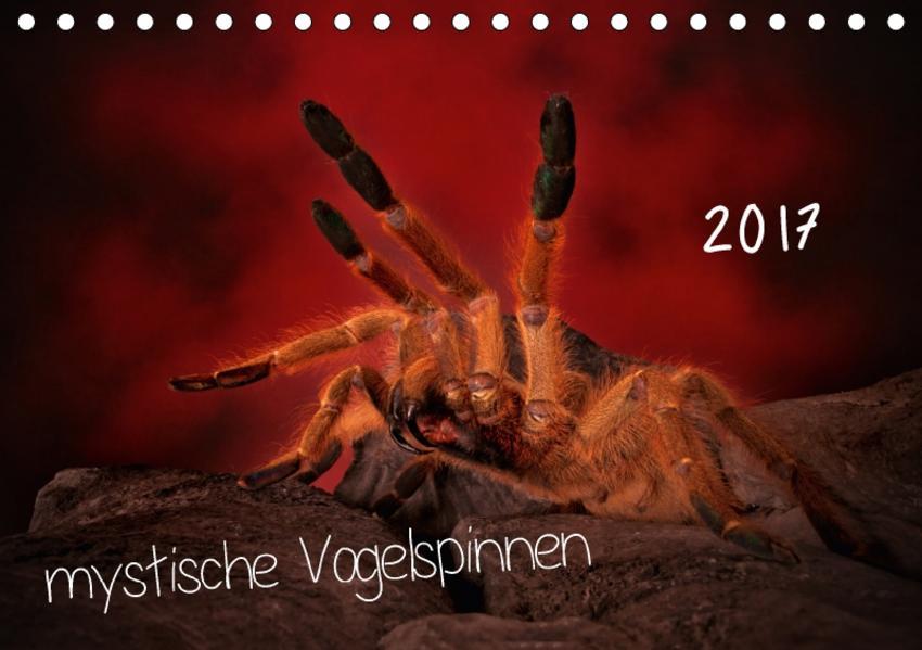 Mystische Vogelspinnen (Tischkalender 2017 DIN A5 quer) - Coverbild