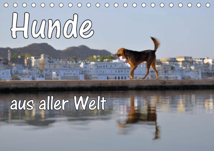 Hunde aus aller Welt (Tischkalender 2017 DIN A5 quer) - Coverbild