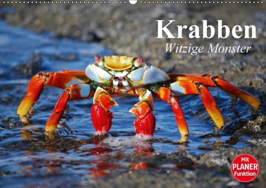 Krabben. Witzige Monster (Wandkalender 2017 DIN A2 quer) - Coverbild