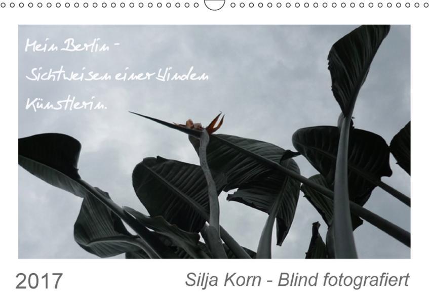 Silja Korn - Blind fotografiert (Wandkalender 2017 DIN A3 quer) - Coverbild