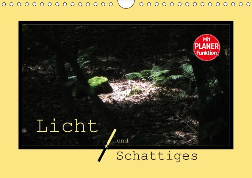 Licht und Schattiges (Wandkalender 2017 DIN A4 quer) - Coverbild