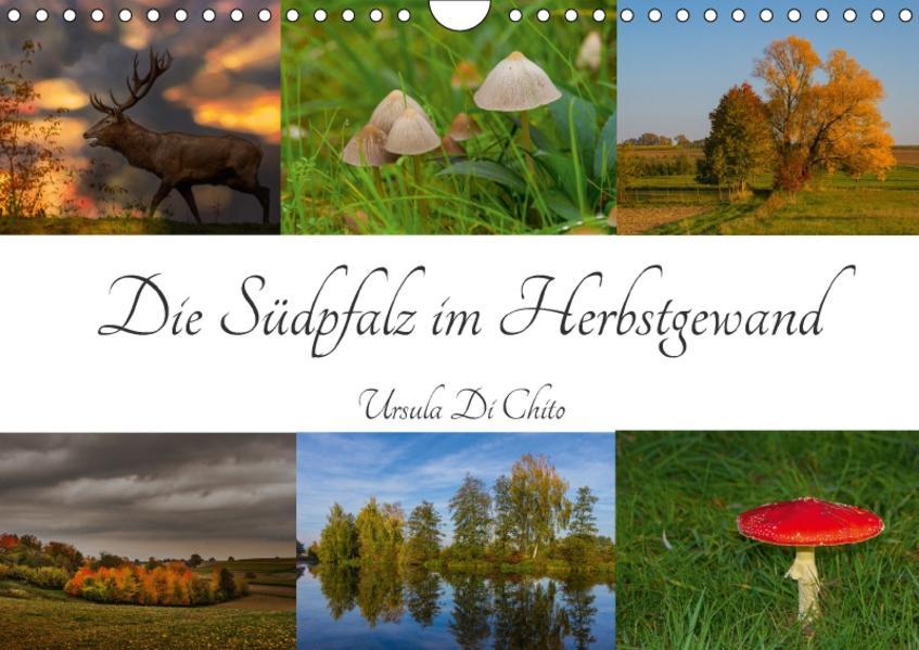 Die Südpfalz im Herbstgewand (Wandkalender 2017 DIN A4 quer) - Coverbild