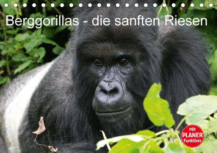 Berggorillas - die sanften Riesen (Tischkalender 2017 DIN A5 quer) - Coverbild