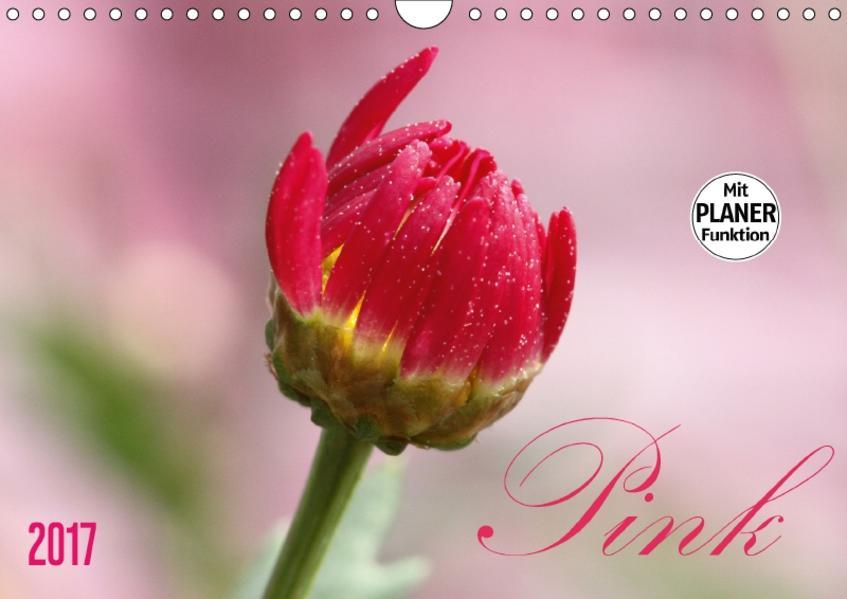 Pink (Wandkalender 2017 DIN A4 quer) - Coverbild
