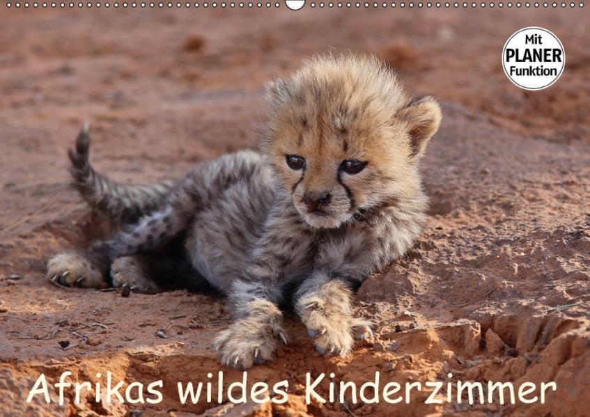 Afrikas wildes Kinderzimmer (Wandkalender 2017 DIN A2 quer) - Coverbild
