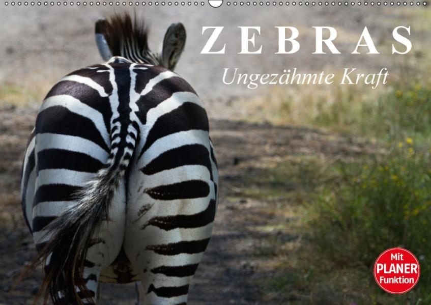 Zebras - Ungezähmte Kraft (Wandkalender 2017 DIN A2 quer) - Coverbild
