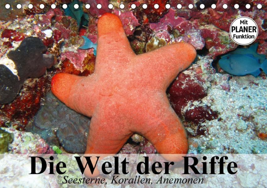 Die Welt der Riffe. Seesterne, Korallen, Anemonen (Tischkalender 2017 DIN A5 quer) - Coverbild