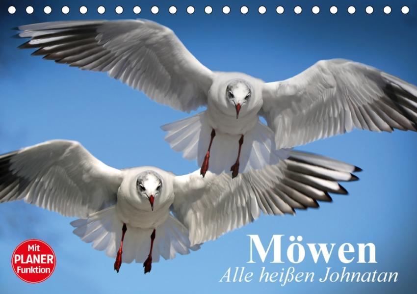 Möwen. Alle heißen Johnatan (Tischkalender 2017 DIN A5 quer) - Coverbild