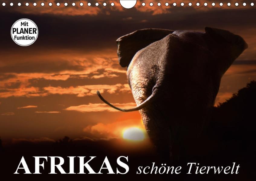 Afrikas schöne Tierwelt (Wandkalender 2017 DIN A4 quer) - Coverbild