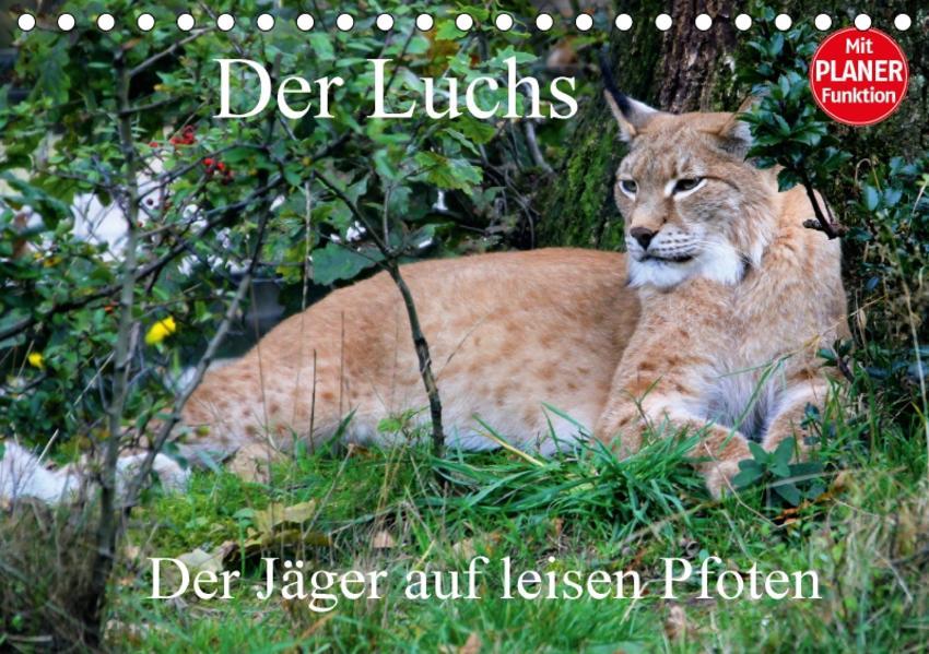 Der Luchs - Der Jäger auf leisen Pfoten (Tischkalender 2017 DIN A5 quer) - Coverbild