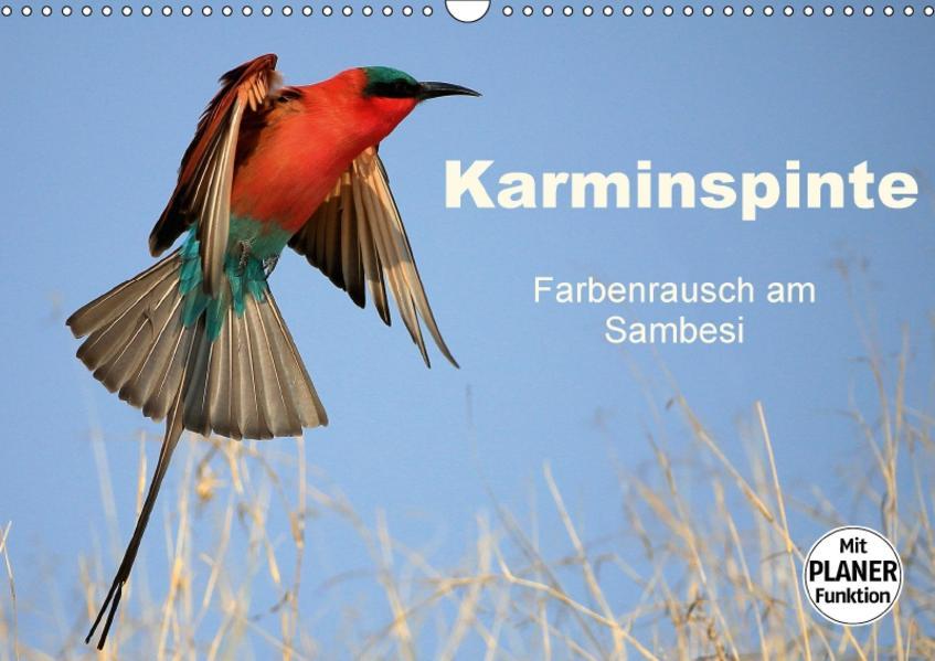 Karminspinte - Farbenrausch am Sambesi (Wandkalender 2017 DIN A3 quer) - Coverbild