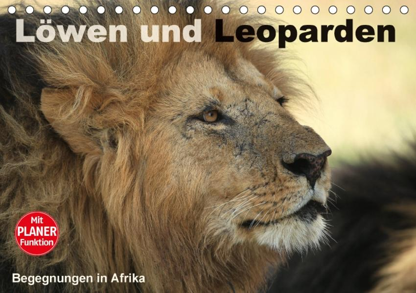 Löwen und Leoparden - Begegnungen in Afrika (Tischkalender 2017 DIN A5 quer) - Coverbild