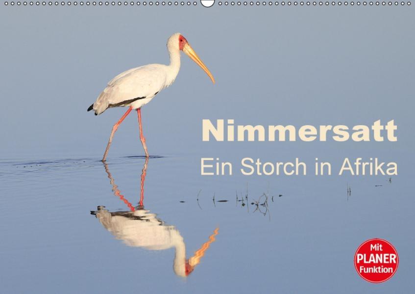 Nimmersatt - Ein Storch in Afrika (Wandkalender 2017 DIN A2 quer) - Coverbild