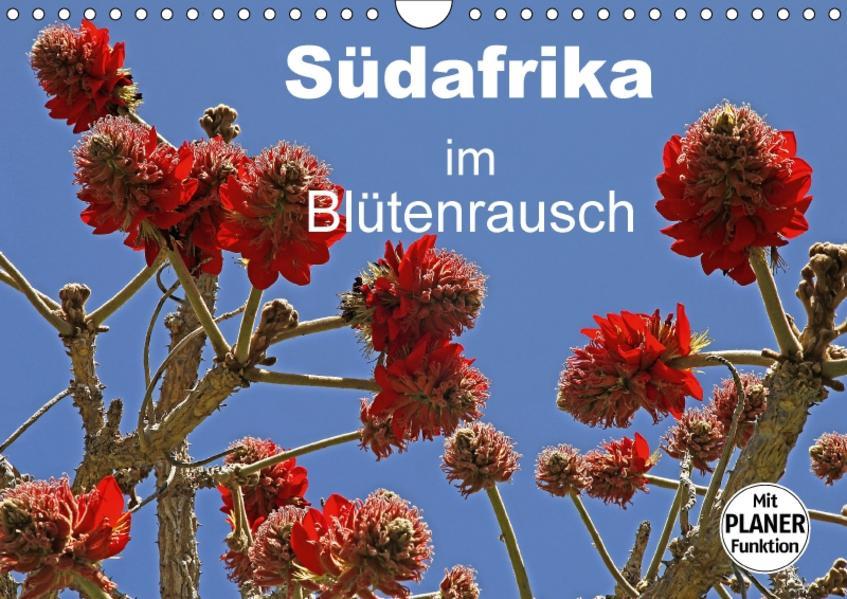 Südafrika im Blütenrausch (Wandkalender 2017 DIN A4 quer) - Coverbild