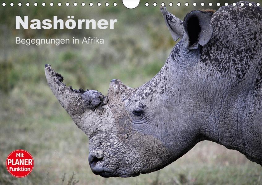Nashörner - Begegnungen in Afrika (Wandkalender 2017 DIN A4 quer) - Coverbild