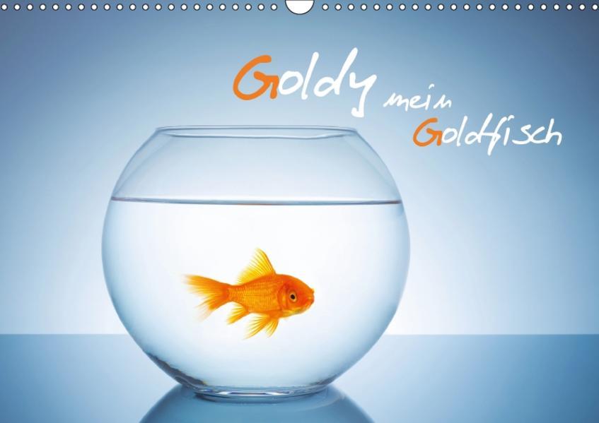 Goldy - mein Goldfisch (Wandkalender 2017 DIN A3 quer) - Coverbild