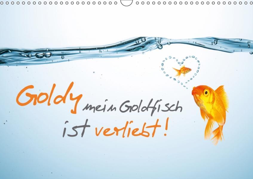 Goldy mein Goldfisch ist verliebt! (Wandkalender 2017 DIN A3 quer) - Coverbild