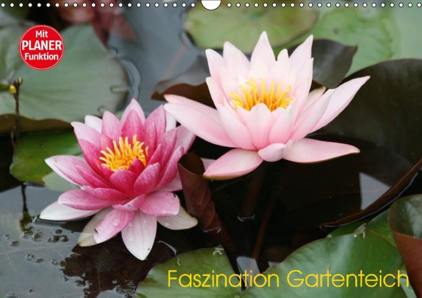 Faszination Gartenteich (Wandkalender 2017 DIN A3 quer) - Coverbild